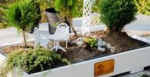 Mini ogrody / Mini ogrody, mały uroczy świat. Wyobraźnia nie zna granic, tworzenie w skali także...:)