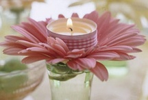 Holidays & Seasons - Spring & Summer / Ideas for holidays and parties in the spring and summer. / by Meg Glover