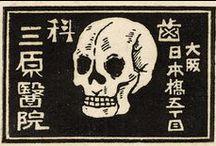 ART - Souvenirs d'asie / Illustrations scientifiques  Best of de premierepage.tumblr.com