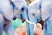Elephants / by mandiskyler grooms