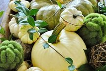 Fall Decor  / decorating ideas for fall and Thanksgiving