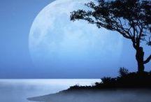 moonlight feels right