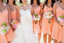 Sherbet Orange