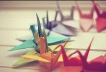 All Paperwork / by Maria Villar de Rohde