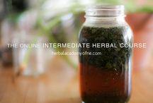 herbalism schools / Herbalism schools and online herbalism courses that rock