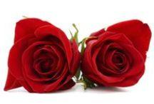 Valentine's Day / Sharing the LOVE