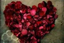 Amore & Felicita