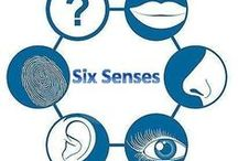 Six Senses / Psychic / Mediumship / Psychometry Readings and Courses with  Michael J Robey, Six Senses