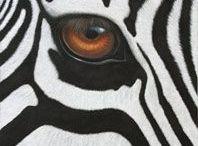 amazing eyes in nature