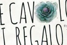 CHE CAVOLO TI REGALO?? winter edition
