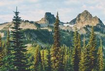 Mountains,woods, forests, hills
