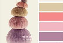 Colour Palette  / Your colour synchronizer helper.