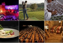 Wine Tasting Tours in a 10th century Castle / Experiencing food and wine of a country is another way to discover its culture.