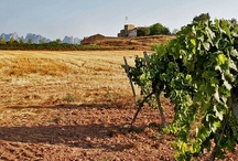 Montserrat & Wine