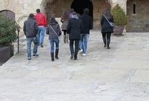Oller del Mas Cellar (morning tour)