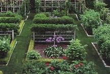 For the garden: Gardening