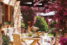Garden and Landscaping / Gardening tips and Landscaping design inspiration