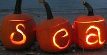 The Beach Is So Boo-tiful / We may not have fall leaves or cool breezes, but we can still carve up a coastal pumpkin or scare up a spooky moonlight scene and have compiled some beach-themed decorating tips, just in time for Halloween.