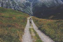 Travel: Schwitzerland & Belgium