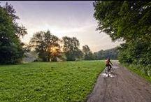 """Green POZNAN / Przedstaw wyjątkowy kadr miejsca, gdzie rozkwitły kolory lata. Liczy się Twoje oryginalne spojrzenie i uchwycenie piękna letniej poznańskiej aury! Prześlij zdjęcie na adres: socialmedia@um.poznan.pl i weź udział w Konkursie """"Zielony Poznań"""". Część nagród przyznaje publiczność - zapraszamy do przepinania i lajkowania ulubionych zdjęć. Do wygrania vouchery na kwiaty oraz gadżety rowerowe!"""