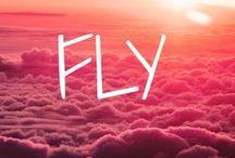 Fly ..