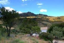 Jardines de ZefiZan / my little piece of heaven in the south of Spain