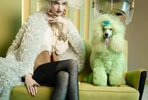 Fashion photography / fashion photography,creative photos, artistic photography