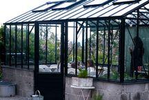 garden | outdoor
