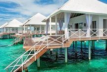 Underwater Wonders / Resorts in Maldives, roller coaster in Japan
