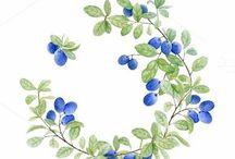 Handletteren ringen/wreathes