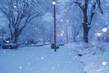 Winter Beauty / by Ellen Carter, Broker