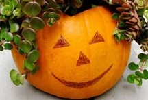 Color ME Pumpkin / And I mean ANYTHING pumpkin - Pasta, Pie, French Toast, Smoothies, Tea, Latte's.  Butternut Squash runs a hot 2nd! / by Ellen Carter, Broker