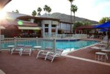 Scottsdale Camelback Resort / Nestled at the foot of Camelback Mountain is the stunning Scottsdale Camelback Resort!  / by Scottsdale Camelback Resort