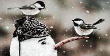 winter / kış mevsimi