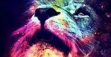 space rainbow / #uzay #gökkuşağı #NEBULA
