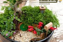 D-I-Y Gardening Projects / Step by Step instructions for some of the most innovative and fun projects on Pinterest!  For both indoor and outdoor gardens.