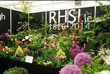 RHSI at Bloom 2014 / Bloom in the Park  29th May – 2nd June (Thursday to Monday) Bloom in the Park, Phoenix Park, Dublin 8. Come and visit the RHSI stand No.5 in the Floral Marquee.