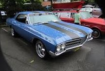 Skylarks,chevelles, and chargers