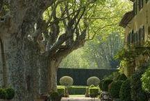 Jardines,patios,terrazas... / by Maricarmen Aparicio Maceiras
