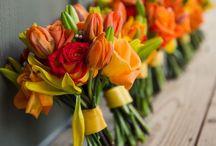 Flowers ❁ / σн, тнє вєαυту σf иαтυяє