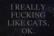 Catz / I lovez Catz