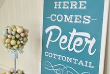 Here comes Peter COTTON tail! / by Bobbie Jo Clark-Cotton