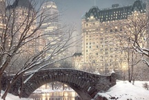 Winter Wonderland / by Annette Metten