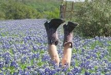 CaLLeD To SeRvE / My heart is in Texas / by CarolLynn Gregson
