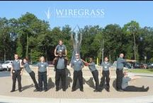 Operation Graduation / Counting down the days till graduation!  #wiregrassgrad   / by Wiregrass Georgia Technical College