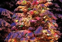 The Lights of Christmas ... / by Bonnie Lowman