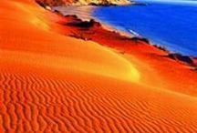 Blue and Orange ... / by Bonnie Lowman