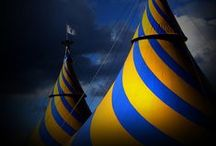 Blue and Yellow ... / by Bonnie Lowman