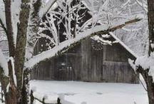 Let it Snow ... / by Bonnie Lowman