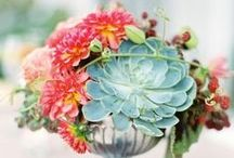 Centerpieces / Table Settings / Florals and table decor that would make sense at the Gem / by Maggie Yoder